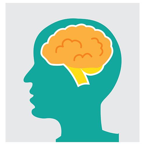 Brain Learning